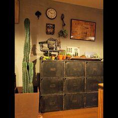 サボテン,Lounge,柱サボテン,インダストリアル,塩ビパイプ照明,リメイク,カラーボックスリメイク,ニトリ,ジャックダニエル,エイジング塗装,錆び塗装,ビンテージ風,swaroちゃんのポスター k55の部屋