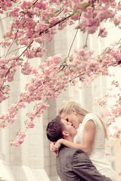 Gorgeous shot of the bride & groom kissing among pink blossoms, Elisabeth Kate Studios Photography