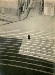 by László Moholy-Nagy, Arles, France, 1929 History Of Photography, Vintage Photography, Street Photography, Art Photography, Straight Photography, Laszlo Moholy Nagy, Francis Picabia, Great Photographers, Monochrom