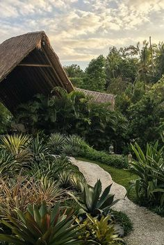 Looking for a place to swim naked and go glamping in Bali? Look no further, I have found just the place for you. Just a short drive outside from Ubud, you will find a secluded paradise with luxury tents and utter privacy. Take a plunge and click through to see more.