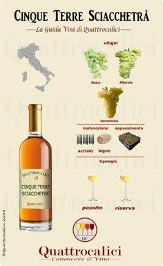 Tutti i vini Cinque Terre Sciacchetrà sulla Guida vini di Quattrocalici. All Cinque Terre Sciacchetrà wines on Quattrocalici wine guide.