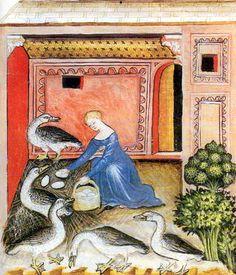Goose keeping, Tacuinum sanitatis, 14th Century. Vienna Austrian National Library, Cod Vindob. P n 2644, northern Italy in 1390
