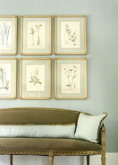 Love the heather green with blue painted walls and matted botanicals.