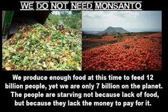 We do not need Monsanto. We produce enough food at this time to feed 12 billion people, yet we are only 7 billion on the planet. The people are starving not because of lack of food, but because they lack the money to pay for it.