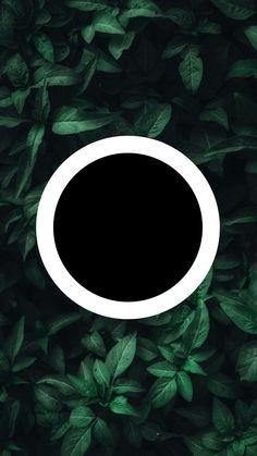 Instagram Logo, Instagram Design, Free Instagram, Iphone Wallpaper Glitter, Wreath Drawing, Instagram Background, Black Background Images, Insta Icon, Arte Pop