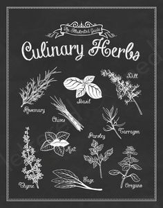 SET of 2 Kitchen Prints from 'An Illustrated Guide' Series - 11x14 Prints. $42.00, via Etsy.