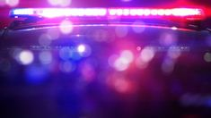 Forty-year-old Michael Brown was arrested in Wyandot County after fleeing from the scene.