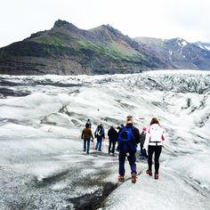 #icelandair Instagram photos | Websta