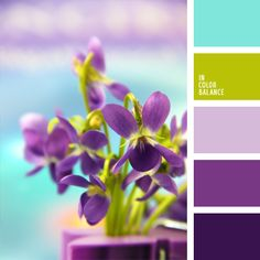 bright colors, color of greenery, color of violets, color palette for wedding… Colour Pallette, Colour Schemes, Color Combos, Color Patterns, Green Palette, Purple Color Palettes, Good Color Combinations, Color Balance, Balance Design
