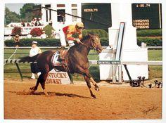 2000 - Fusaichi Pegasus - 126th Beautiful Horses, Animals Beautiful, Triple Crown Winners, Derby Winners, Churchill Downs, Sport Of Kings, Thoroughbred Horse, Racehorse, Kentucky Derby
