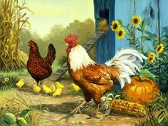 Hen and Rooster Painting   Adorable Art : Art, Design