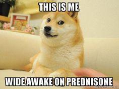 Prednisone meme - Google Search