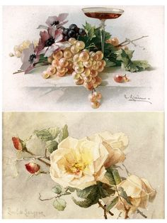 Catherine Klein, Decoupage, Floral Illustrations, Yellow Roses, Vintage Prints, Vintage Images, Flower Art, Still Life, Floral Wreath