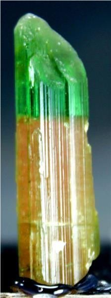 WOW 35 carats Top Quality terminated Bi Color ELBITE TOURMALINE Crystal @Paproke