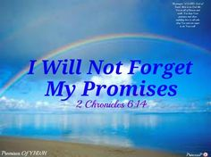 I Will Not Forget My Promises