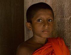 "Check out new work on my @Behance portfolio: ""Photography Sri lanka"" http://be.net/gallery/36936641/Photography-Sri-lanka"