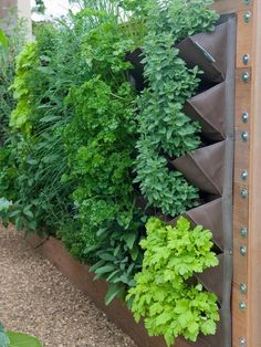 Vertical Garden: Metal planters create a vertical garden on the side of a fence. From HGTV.coms Garden Galleries