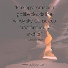 #meditation #meditate #guidedmeditation #dailymeditation #meditationquotes #sipandom