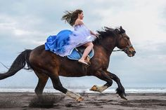 Instagram media by marina_kam - Photoshoots on the ocean soon  - #equine #photooftheday #foal #equality #конь #paard #bestofequines #equine_feature #worldsbesthorses #horsesofinstagram #beautiful #horsephotog #pony #photoshoot #instagram #horse #cheval #pferd #enempost #photography #nikon #horsephotography #конь #russia #лошадь #photooftheday #horses