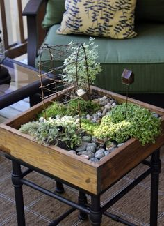 Fairy Gardens can be indoor or outdoor.