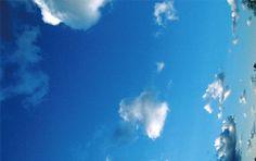 ただただ《青い空》には惹かれる photo