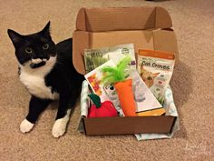 PetPack sent me a box. All opinions are my own. PetPack is a subscription box catered to your dog or cat that includes treats, toys, fun gadgets, and grooming items. Enter to win your choice of a d…