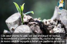 Con Amor eterno te amé  http://www.diocesisvitoria.org/blog/2016/05/26/con-amor-eterno-ain-karem/