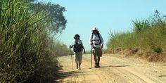O Caminho do Sol: 240 km a pé ou de bike para saudar a natureza