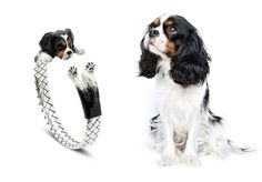 DOG FEVER COLLECTION | Customized Jewelry to look like YOUR DOG