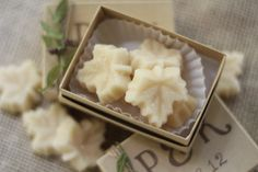Maple Sugar Candy Favors