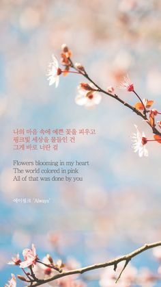 Trendy Quotes Lyrics Kpop Wanna One Ideas K Quotes, Lyric Quotes, Happy Quotes, Quotes Girls, Korean Phrases, Korean Words, L Wallpaper, Wallpaper Quotes, Song Quotes