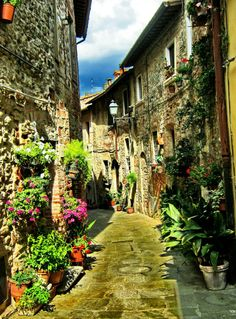 How to Find the Best Escorted Tours Of Italy (with 15 Photos) Firenze Italy, Tuscany Italy, Italy Tourist Attractions, Travel Around The World, Around The Worlds, Tuscany Landscape, Toscana Italia, Italy Tours, Visit Italy