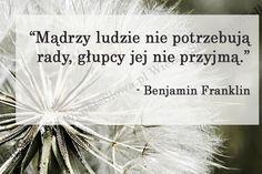 Mądrzy ludzie nie potrzebują rady... #Franklin-Benjamin,  #Głupota-i-naiwność, #Mądrość-i-wiedza Benjamin Franklin, Album, Words, Happiness, Quotes, Bonheur, Being Happy, Happy, Horse
