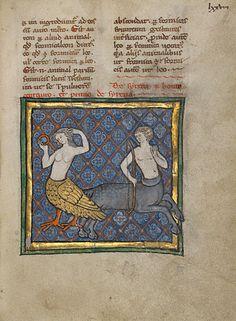 From thirteenth-century Franco–Flemish illuminated manuscript; a siren (here a symbol of vanity) and centaur (hypocrisy). (The J Paul Getty Museum)