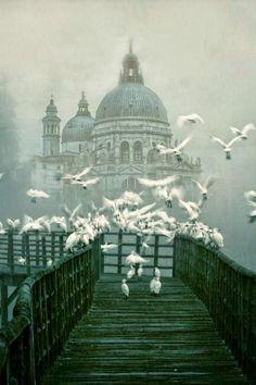 Santa Maria della Salute - Venice, Italy! Takes your breath away,so beautiful!