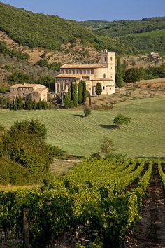 San Antimo Monastery, Tuscany By Brian Jannsen