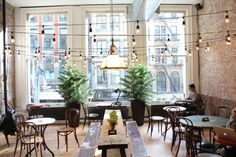 coffee shop:  lights, plants, and tables