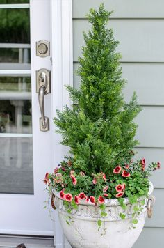successfully grow shrubs and bushes in containers.even if you don't have a green thumb - These shrubs in a planter add instant curb appeal without the maintenance. Front Porch Planters, Tree Planters, Porch Plants, Privacy Plants, Potted Trees Patio, Patio Privacy, Porch Trees, Fall Planters, Faux Outdoor Plants