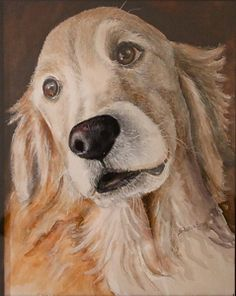 Flash by Sharon Bray Watercolor ~ 10 x 8