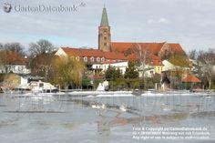 The Dom, Brandenburg an der Havel