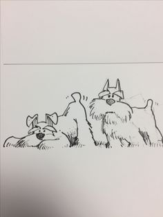 56 ideas tattoo dog schnauzer animals for 2019 Dog Tattoos, Animal Tattoos, Animal Drawings, Art Drawings, Schnauzer Art, Miniature Schnauzer, Disney Tattoos, Illustrations, Dog Art