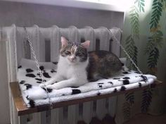 гамак для кошек на батарею