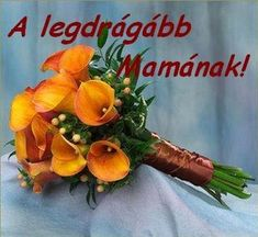 Ideas Wedding Bridesmaids Orange Calla Lilies For 2019 Calla Lily Bridesmaid Bouquet, Lily Bouquet Wedding, Bridal Bouquets, Flower Bouquets, Orange Wedding Flowers, Bridal Flowers, Wedding Colors, Orange Flowers, Purple Wedding