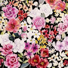 Camellias_05.jpg