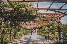 Ez a szezon is véget ért. Mivel nem volt sok időm a bloggal foglalkozni, így most kerülnek majd fel az idei esküvők és jegyes sorozatok. Legalább a téli időszakban sem unatkoztok :)Hanna és Mark egy nagyon kedves osztrák pár. Ugyan az esküvő előtt csak e-mail-en és skype-on… Weddings in Baden, Austria. Wedding photographer