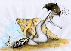 Shell-ter   Fasciolaria Umbrellata