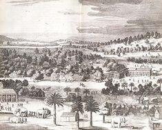 Olifantenvangst voor de handel, Ph. Baldaeus, Ceylon, Amsterdam 1672, p. 198