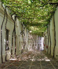 archatlas: Jerez Byass Bodega Old Streets