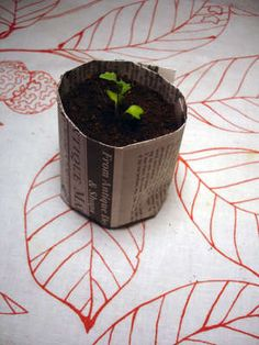 Instructions for how to make newspaper pots using mason jar as a form