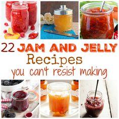 22 Jam and Jelly Recipes You Can't Resist Making – Community Table Lime Jam Recipes, Rhubarb Jam Recipes, Pepper Jelly Recipes, Freezer Jam Recipes, Canning Recipes, Fruit Recipes, Crockpot Recipes, Habanero Jam Recipe, Carrot Cake Jam